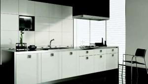 Kuchyňská dvířka Proform 021